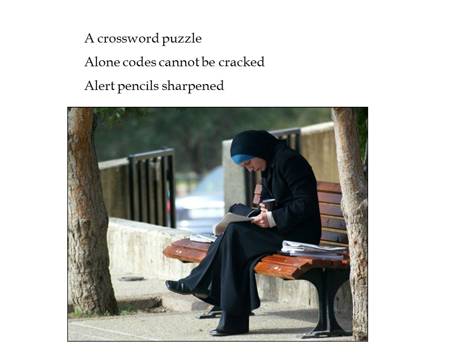 A crossword puzzle Alone codes cannot be cracked Alert pencils sharpened