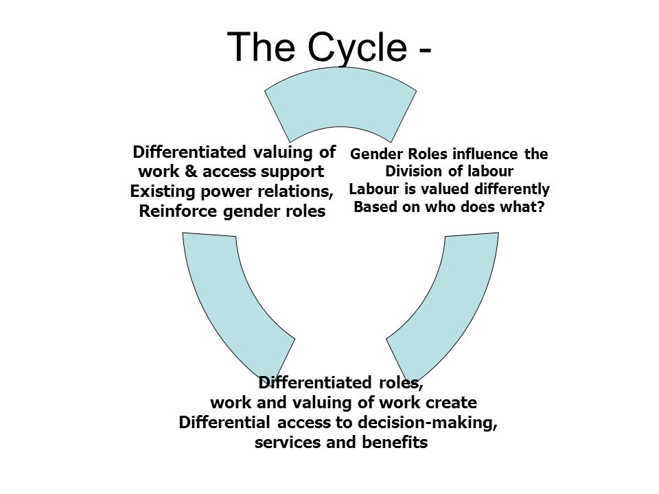 The Cycle - Gender Roles influence the Division of labour Labour is valued differently Based on who does what? Differentiated roles, work and valuing
