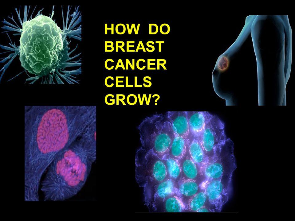 HOW DO BREAST CANCER CELLS GROW?