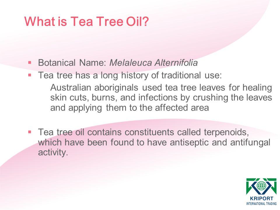 What is Tea Tree Oil?  Botanical Name: Melaleuca Alternifolia  Tea tree has a long history of traditional use: Australian aboriginals used tea tree