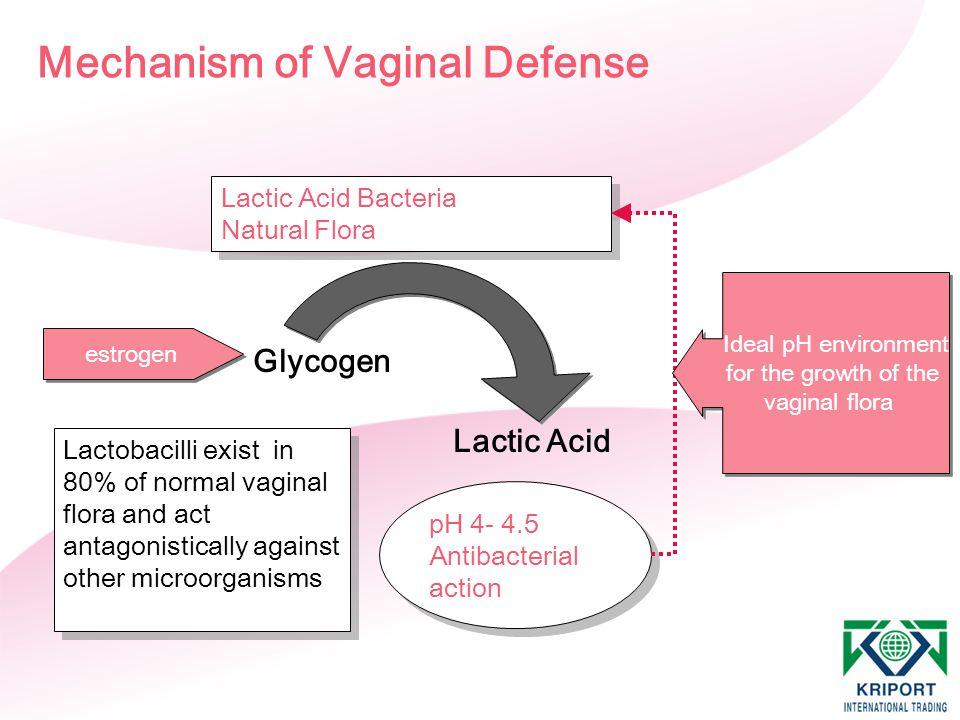 Mechanism of Vaginal Defense Lactic Acid Bacteria Natural Flora Lactic Acid Bacteria Natural Flora Glycogen Lactic Acid estrogen pH 4- 4.5 Antibacteri