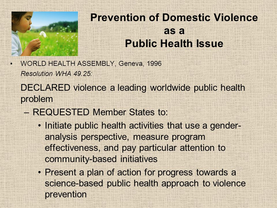 Prevention of Domestic Violence as a Public Health Issue WORLD HEALTH ASSEMBLY, Geneva, 1996 Resolution WHA 49.25: DECLARED violence a leading worldwide public health problem –REQUESTED Member States to: Initiate public health activities that use a gender- analysis perspective, measure program effectiveness, and pay particular attention to community-based initiatives Present a plan of action for progress towards a science-based public health approach to violence prevention