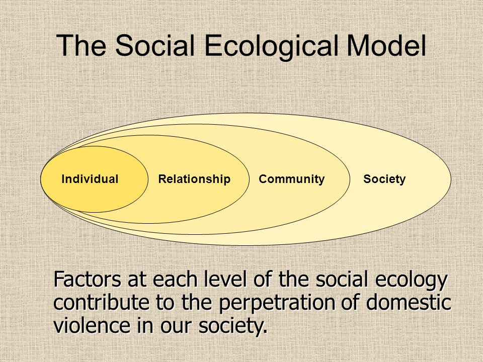 The Social Ecological Model IndividualRelationshipCommunitySociety Factors at each level of the social ecology contribute to the perpetration of domestic violence in our society.