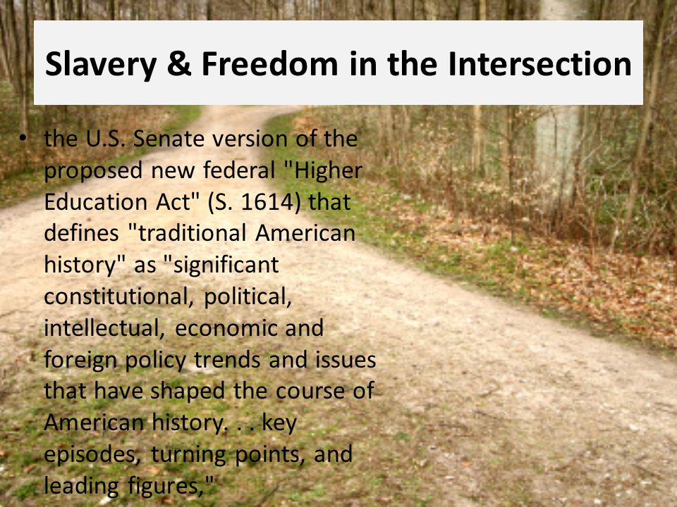 Slavery & Freedom in the Intersection the U.S. Senate version of the proposed new federal