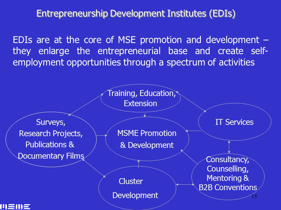 15 Consultancy, Counselling, Mentoring & B2B Conventions MSME Promotion & Development IT Services Cluster Development Training, Education, Extension Surveys, Research Projects, Publications & Documentary Films Entrepreneurship Development Institutes (EDIs) EDIs are at the core of MSE promotion and development – they enlarge the entrepreneurial base and create self- employment opportunities through a spectrum of activities