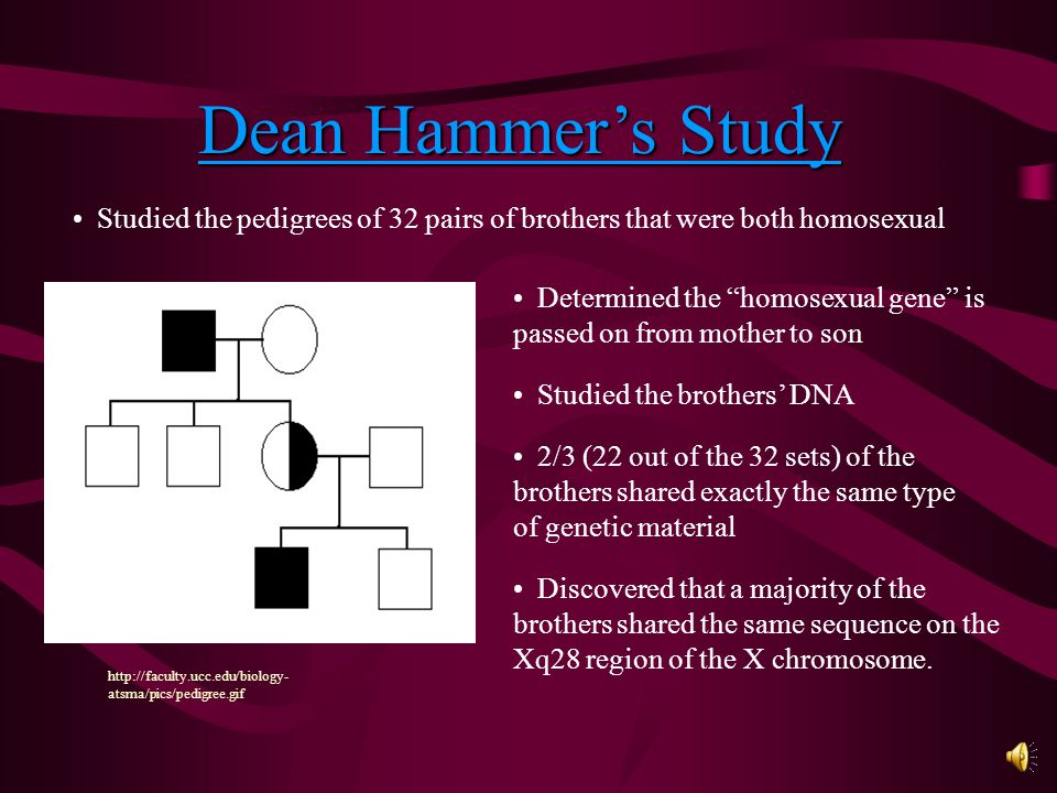 Pedigree study : Dean Hammer Twin Study : J. Michael Bailey and Richard C.