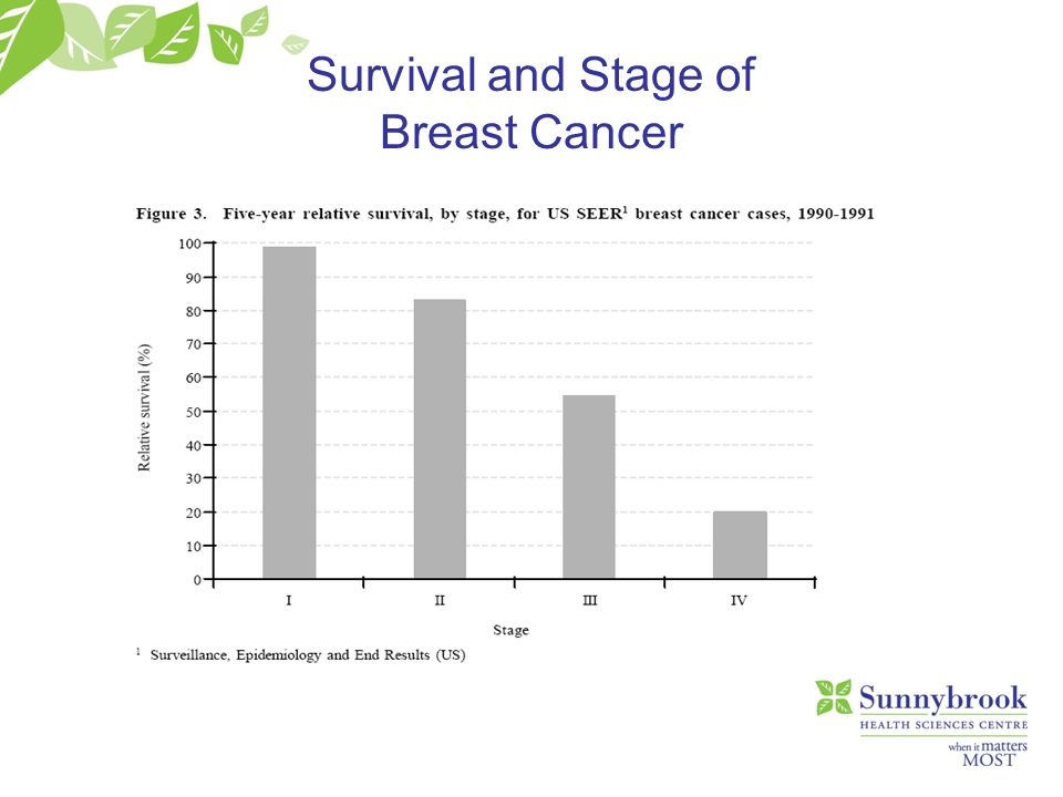 Mammogram X-ray of the Breast No screening tool 100% effective 85-90% of all breast cancers in women > 50 can be identified on mammogram