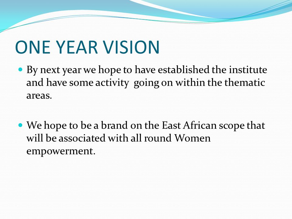 ONE YEAR VISION By next year we hope to have established the institute and have some activity going on within the thematic areas.