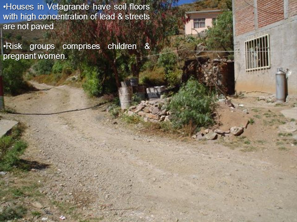 Houses in Vetagrande have soil floors with high concentration of lead & streets are not paved.Houses in Vetagrande have soil floors with high concentration of lead & streets are not paved.