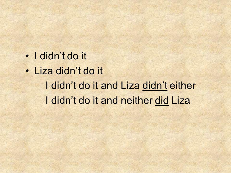 I didn't do it Liza didn't do it I didn't do it and Liza didn't either I didn't do it and neither did Liza