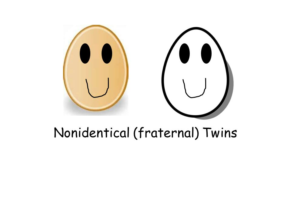 Nonidentical (fraternal) Twins