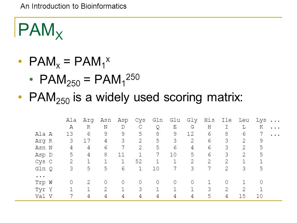 An Introduction to Bioinformatics PAM X PAM x = PAM 1 x PAM 250 = PAM 1 250 PAM 250 is a widely used scoring matrix: Ala Arg Asn Asp Cys Gln Glu Gly His Ile Leu Lys...