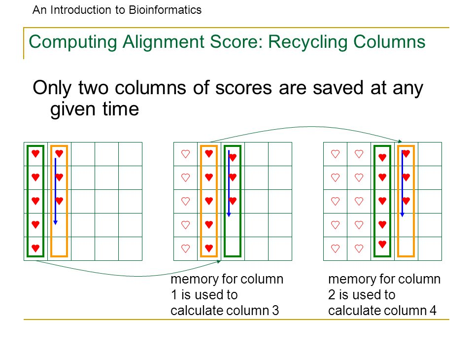 An Introduction to Bioinformatics Computing Alignment Score: Recycling Columns memory for column 1 is used to calculate column 3 memory for column 2 is used to calculate column 4 Only two columns of scores are saved at any given time