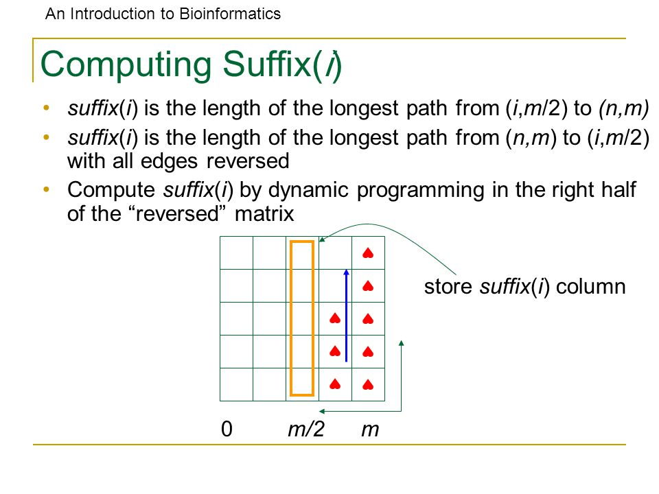An Introduction to Bioinformatics Computing Suffix(i) suffix(i) is the length of the longest path from (i,m/2) to (n,m) suffix(i) is the length of the
