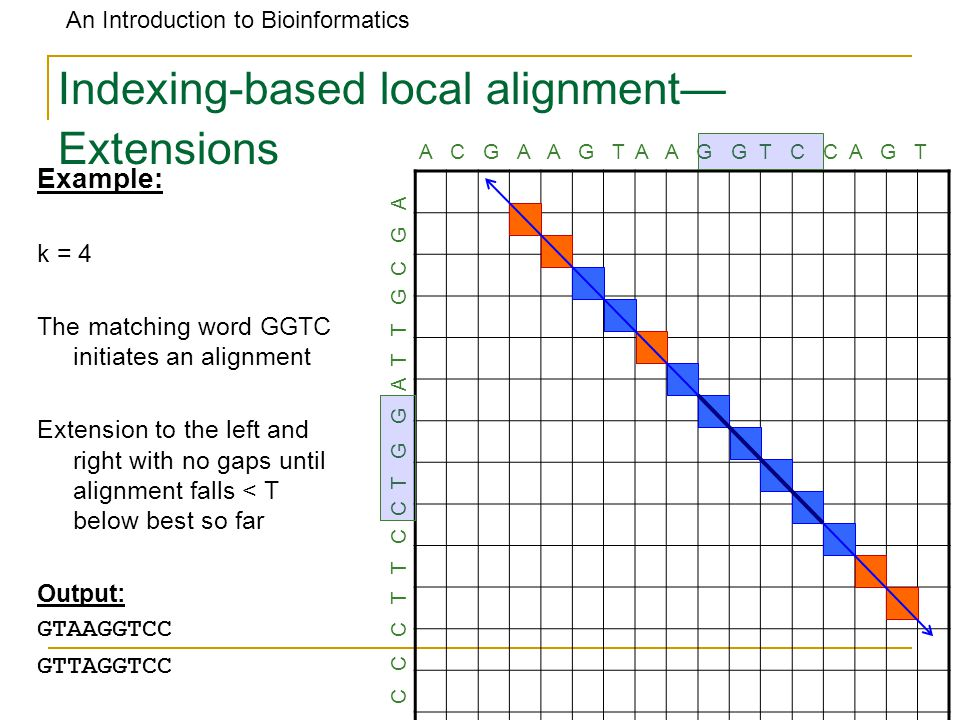 An Introduction to Bioinformatics Indexing-based local alignment— Extensions A C G A A G T A A G G T C C A G T C C C T T C C T G G A T T G C G A Examp