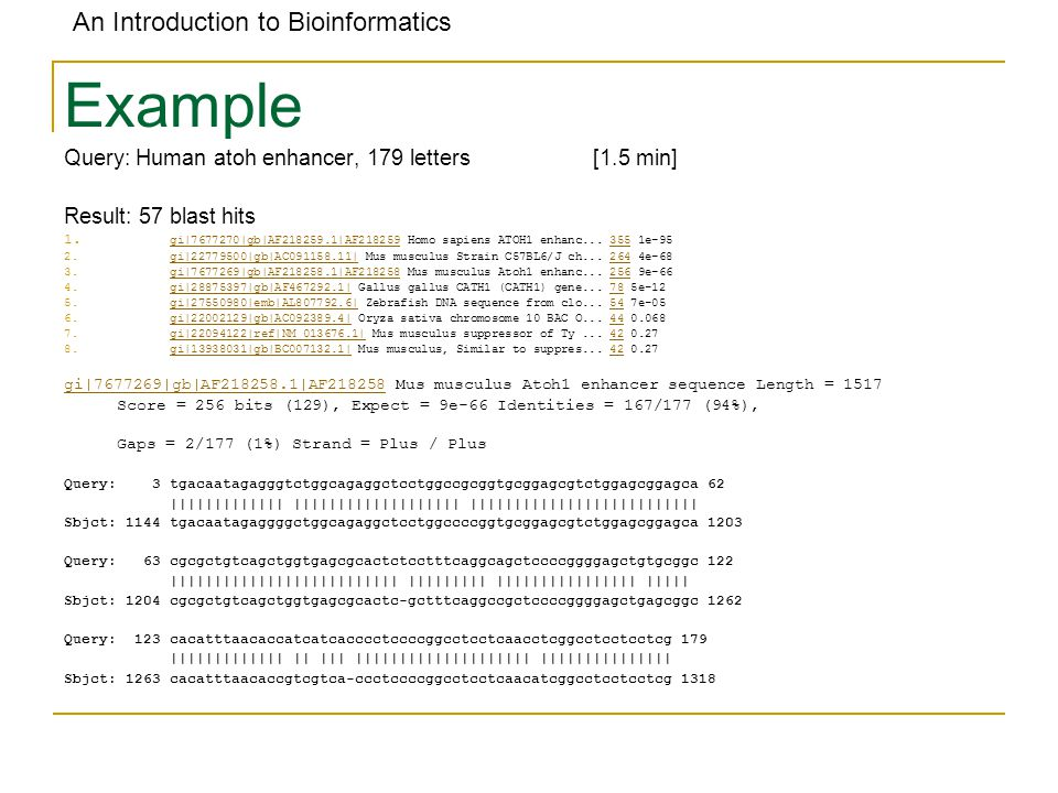 An Introduction to Bioinformatics Example Query: Human atoh enhancer, 179 letters[1.5 min] Result: 57 blast hits 1.