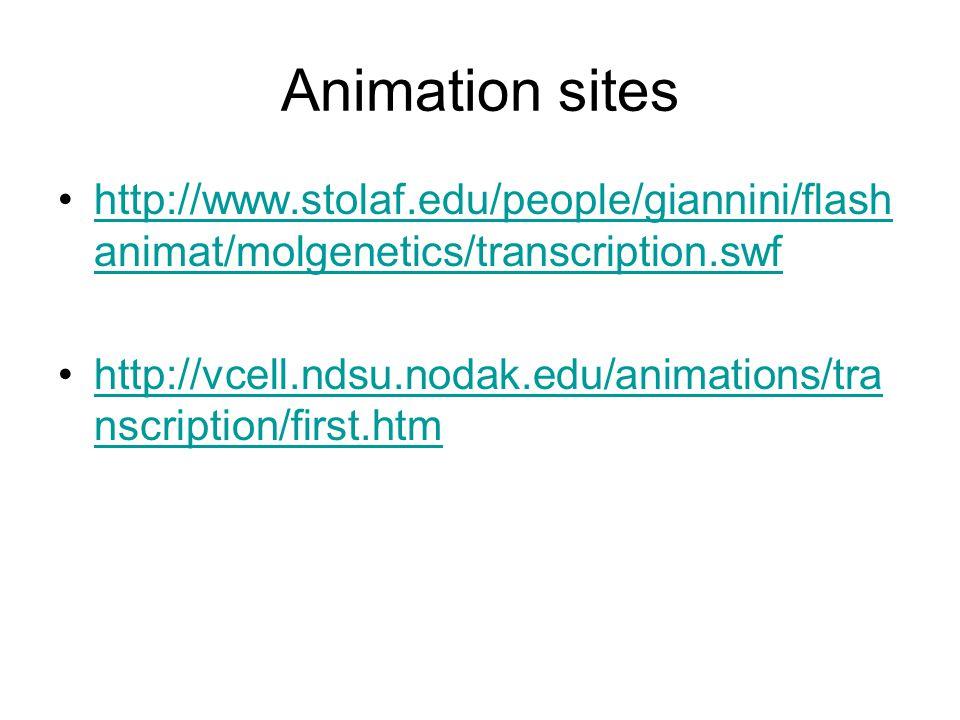 Animation sites http://www.stolaf.edu/people/giannini/flash animat/molgenetics/transcription.swfhttp://www.stolaf.edu/people/giannini/flash animat/mol