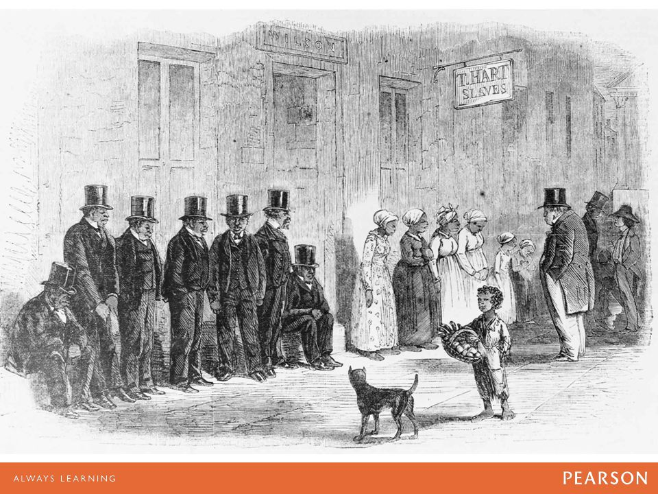 Slaves, dressed in new clothing, lined up outside a New Orleans slave pen for inspection by potential buyers