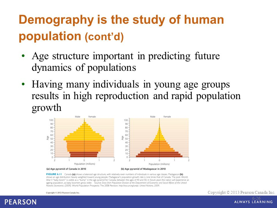 © 2010 Pearson Education Canada Copyright © 2013 Pearson Canada Inc. Demography is the study of human population (cont'd) Age structure important in p