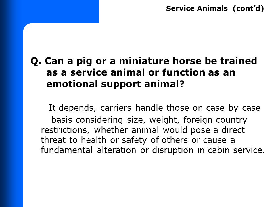 Q. Can a pig or a miniature horse be trained as a service animal or function as an emotional support animal? It depends, carriers handle those on case