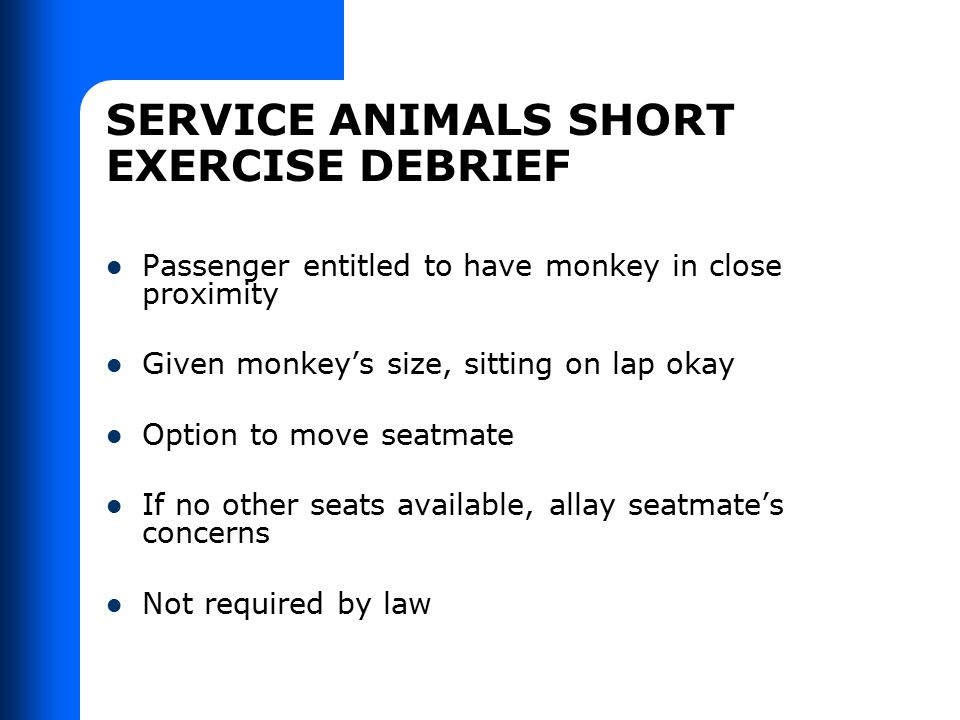 SERVICE ANIMALS SHORT EXERCISE DEBRIEF Passenger entitled to have monkey in close proximity Given monkey's size, sitting on lap okay Option to move se