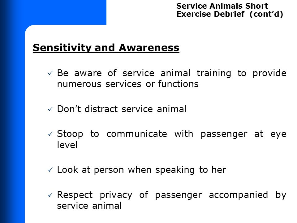 Sensitivity and Awareness Be aware of service animal training to provide numerous services or functions Don't distract service animal Stoop to communi