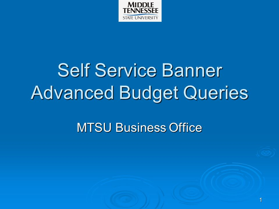 1 Self Service Banner Advanced Budget Queries MTSU Business Office