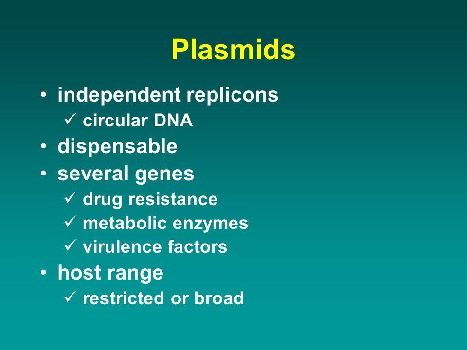 Plasmids independent replicons circular DNA dispensable several genes drug resistance metabolic enzymes virulence factors host range restricted or bro