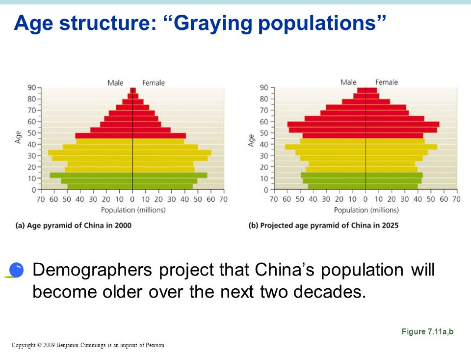 Copyright © 2009 Benjamin Cummings is an imprint of Pearson Age structure: Graying populations Demographers project that China's population will become older over the next two decades.