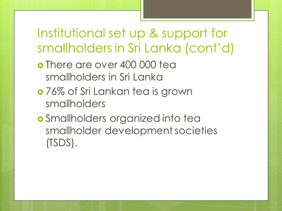 Institutional set up & support for smallholders in Sri Lanka (cont'd)  There are over 400 000 tea smallholders in Sri Lanka  76% of Sri Lankan tea i