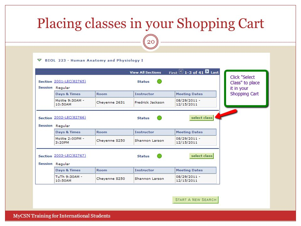Placing classes in your Shopping Cart 20 MyCSN Training for International Students