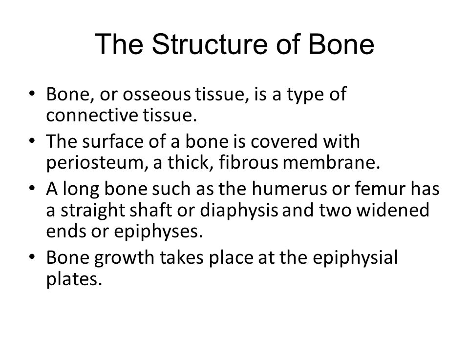 The Structure of Bone Bone, or osseous tissue, is a type of connective tissue. The surface of a bone is covered with periosteum, a thick, fibrous memb