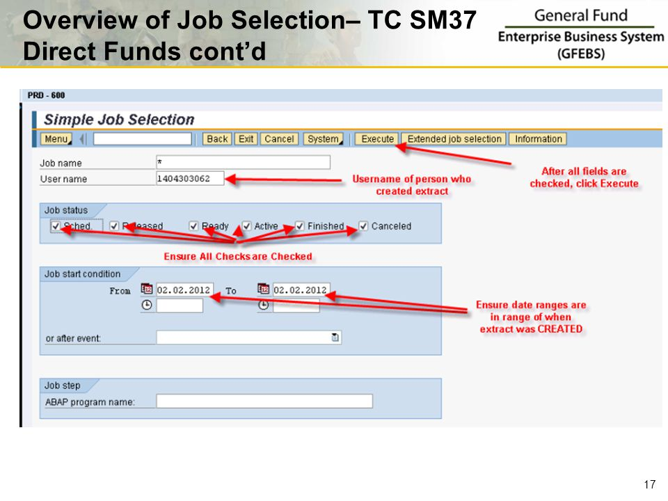 17 Overview of Job Selection– TC SM37 Direct Funds cont'd