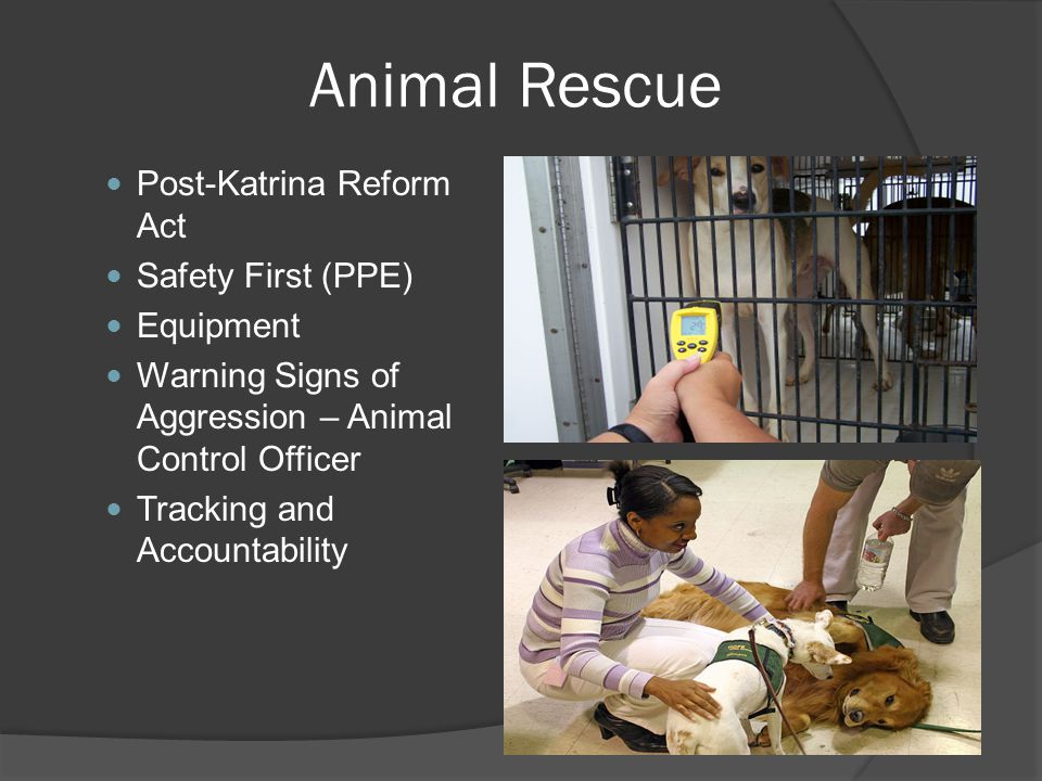 Animal Rescue Post-Katrina Reform Act Safety First (PPE) Equipment Warning Signs of Aggression – Animal Control Officer Tracking and Accountability