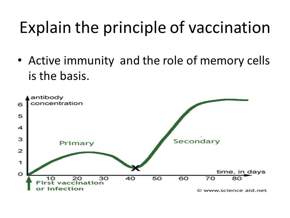 Discuss the benefits and dangers of vaccination PROS: Total elimination of disease (smallpox, polio next?) Prevention of pandemics and epidemics Decreased health-care costs CONS: Possible side-effects esp to Hg in vaccines Possible overload of immune sys Possible link to other conditions (autism?)