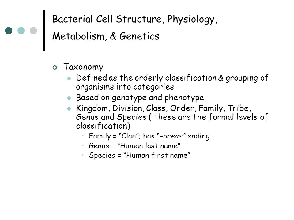 Bacterial Cell Structure, Physiology, Metabolism, & Genetics Taxonomy Defined as the orderly classification & grouping of organisms into categories Based on genotype and phenotype Kingdom, Division, Class, Order, Family, Tribe, Genus and Species ( these are the formal levels of classification) Family = Clan ; has –aceae ending Genus = Human last name Species = Human first name