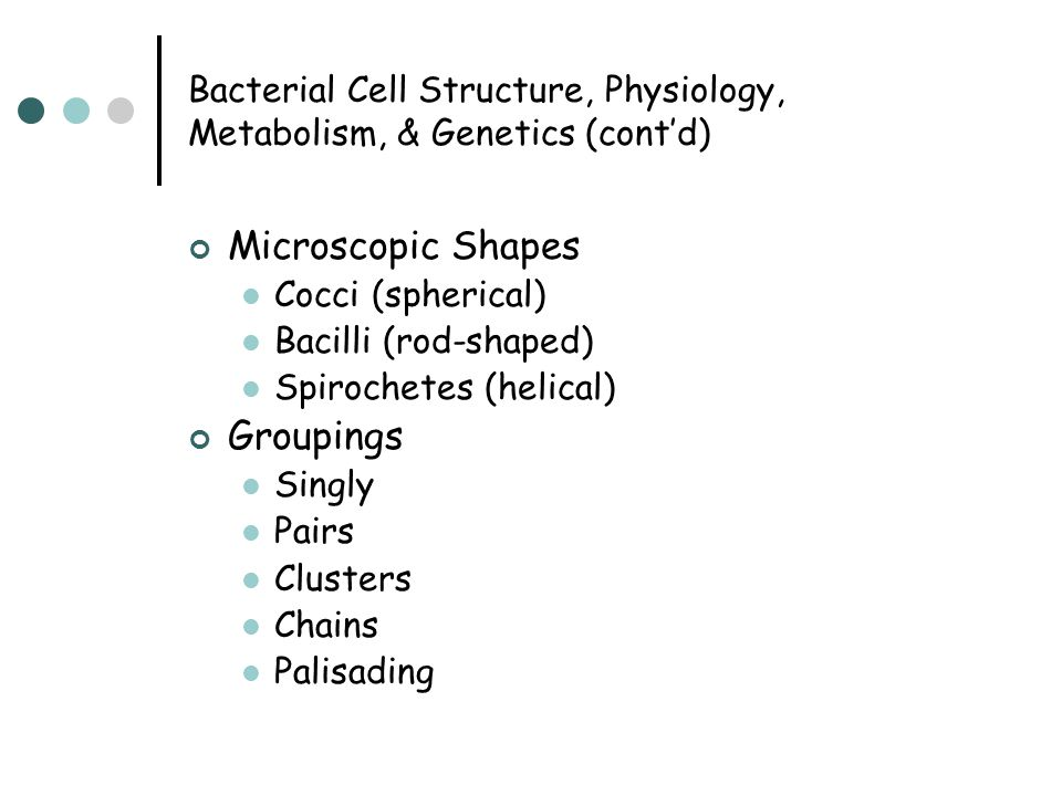 Bacterial Cell Structure, Physiology, Metabolism, & Genetics (cont'd) Microscopic Shapes Cocci (spherical) Bacilli (rod-shaped) Spirochetes (helical)