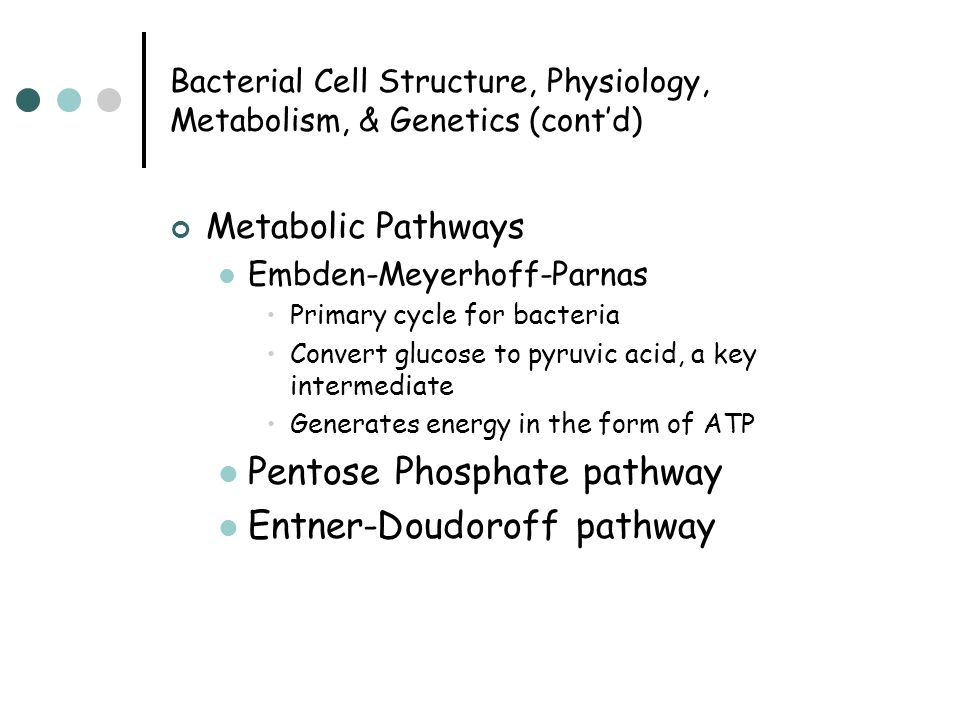 Bacterial Cell Structure, Physiology, Metabolism, & Genetics (cont'd) Metabolic Pathways Embden-Meyerhoff-Parnas Primary cycle for bacteria Convert gl