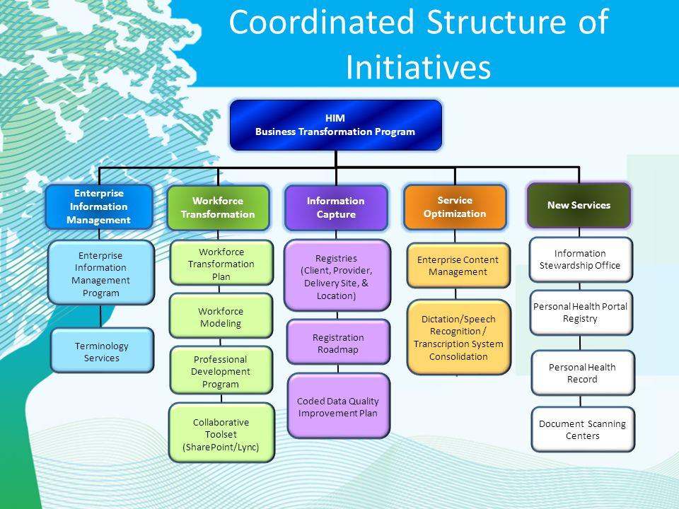 Coordinated Structure of Initiatives Enterprise Information Management Service Optimization Workforce Transformation Information Capture HIM Business