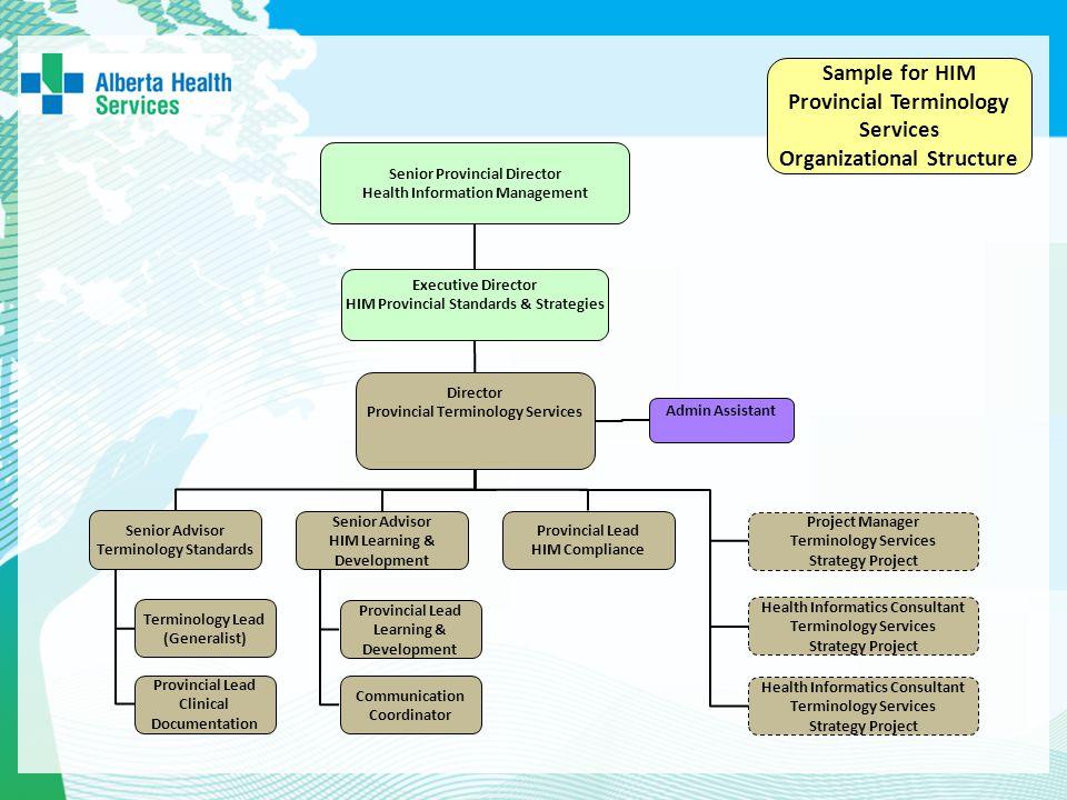 Sample for HIM Provincial Terminology Services Organizational Structure Executive Director HIM Provincial Standards & Strategies Senior Provincial Dir