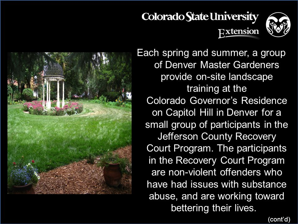 Each spring and summer, a group of Denver Master Gardeners provide on-site landscape training at the Colorado Governor's Residence on Capitol Hill in Denver for a small group of participants in the Jefferson County Recovery Court Program.