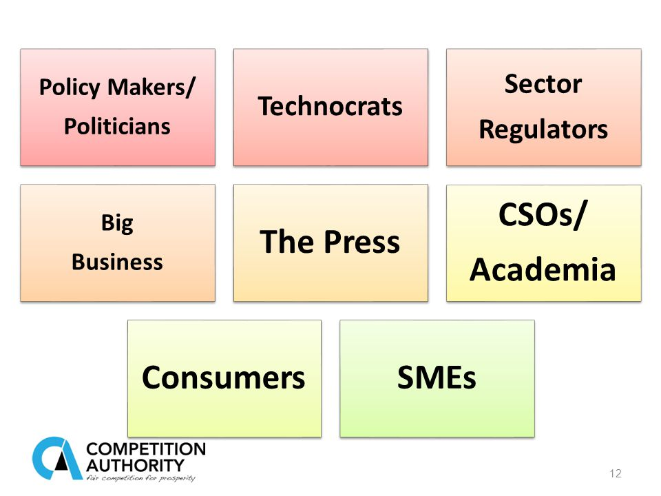 12 Policy Makers/ Politicians Technocrats Sector Regulators Big Business The Press CSOs/ Academia ConsumersSMEs