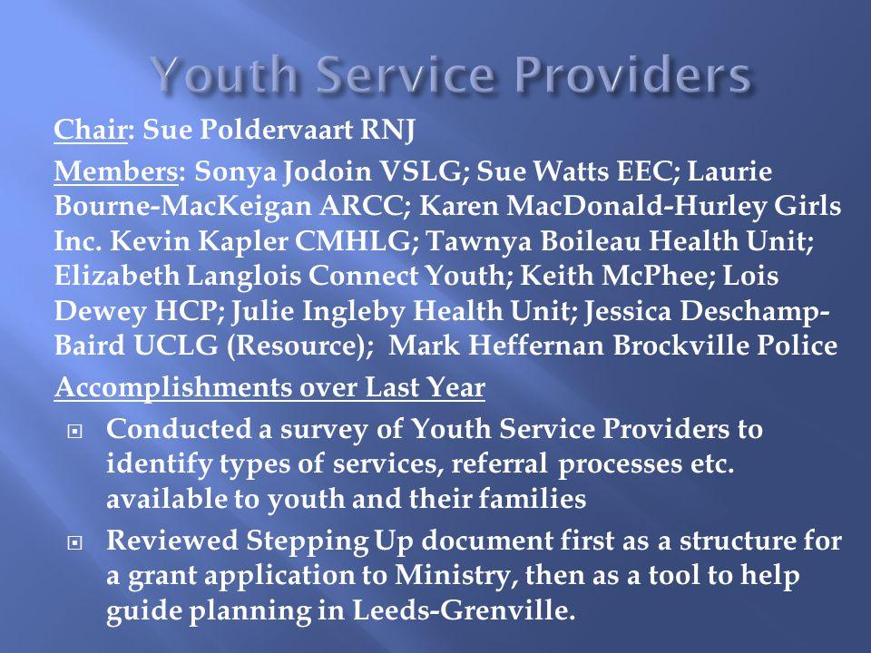 Chair: Sue Poldervaart RNJ Members: Sonya Jodoin VSLG; Sue Watts EEC; Laurie Bourne-MacKeigan ARCC; Karen MacDonald-Hurley Girls Inc.