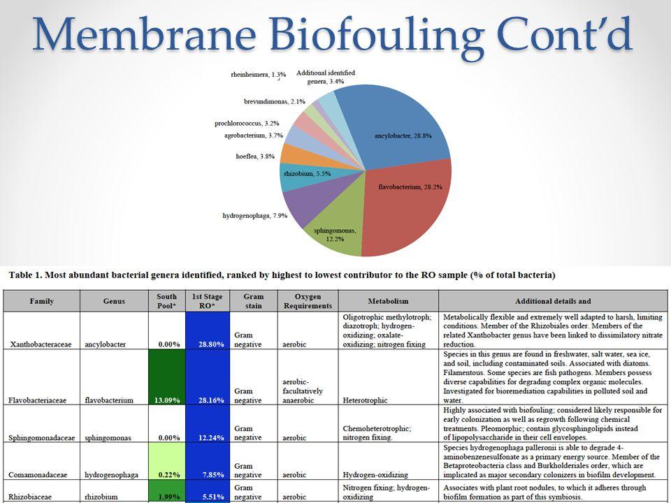 Membrane Biofouling Cont'd