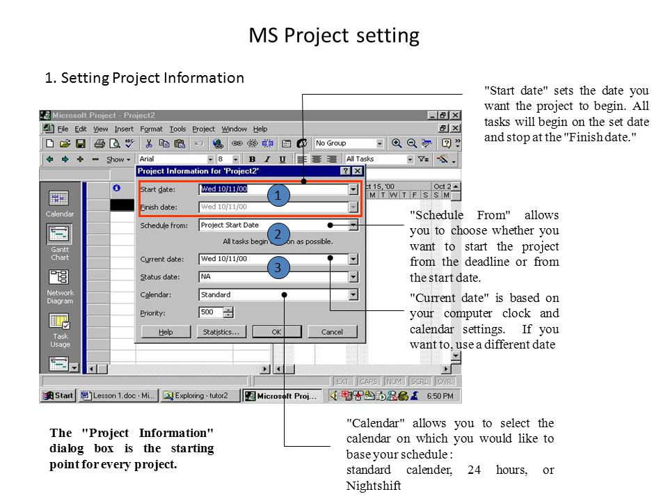 MS Project setting The