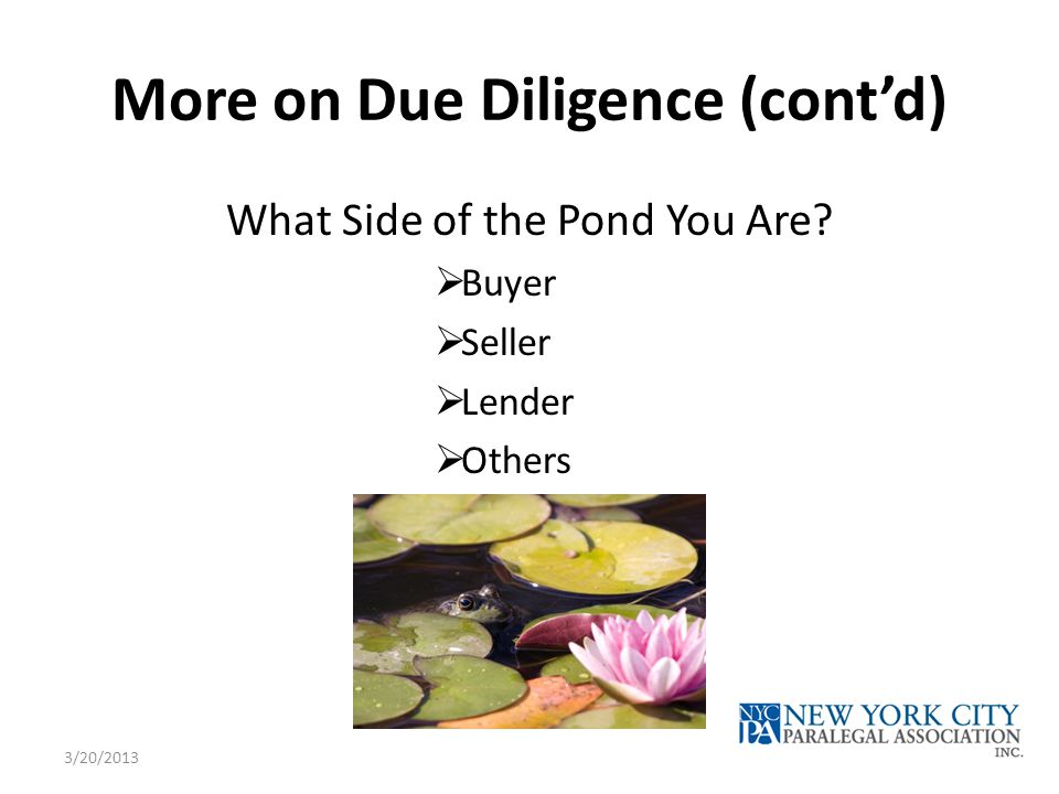 More on Due Diligence (cont'd) What Side of the Pond You Are.