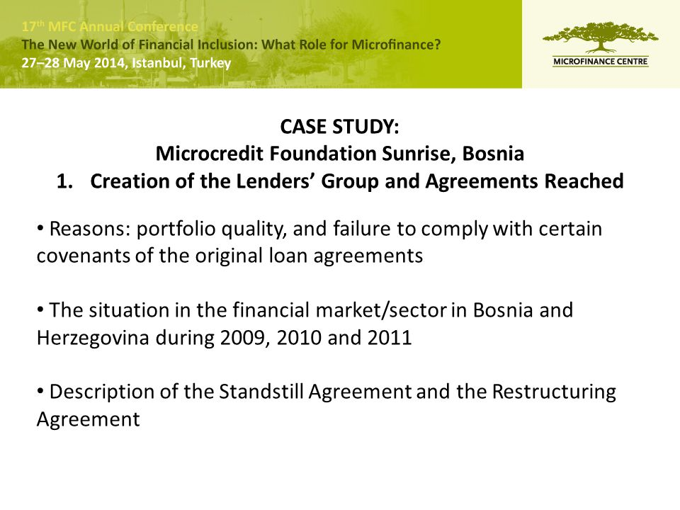 CASE STUDY: Microcredit Foundation Sunrise, Bosnia 1.Creation of the Lenders' Group and Agreements Reached Reasons: portfolio quality, and failure to comply with certain covenants of the original loan agreements The situation in the financial market/sector in Bosnia and Herzegovina during 2009, 2010 and 2011 Description of the Standstill Agreement and the Restructuring Agreement