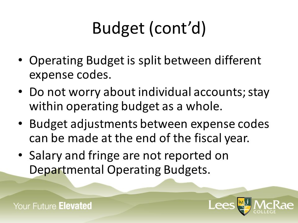 Budget (cont'd) Operating Budget is split between different expense codes.