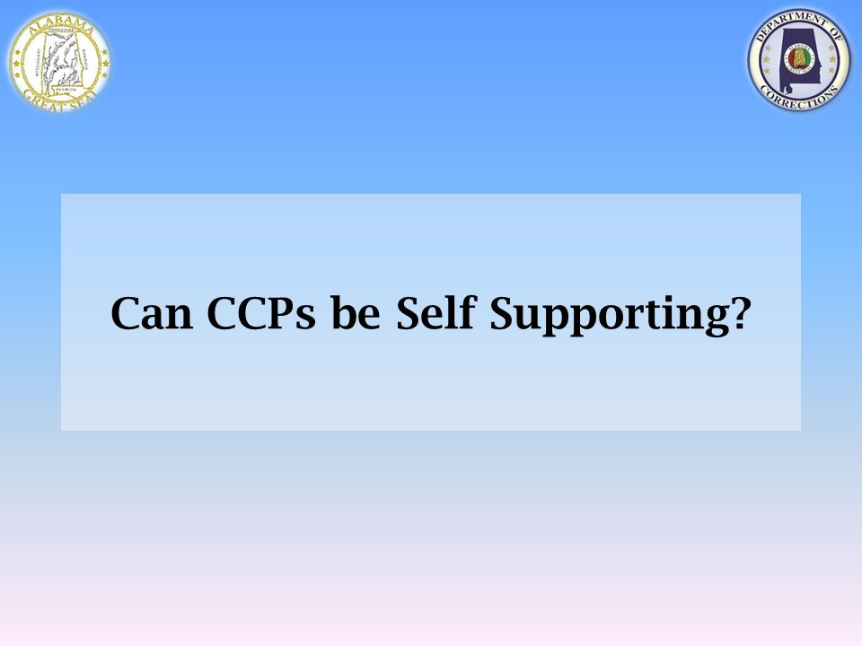 Can CCPs be Self Supporting?