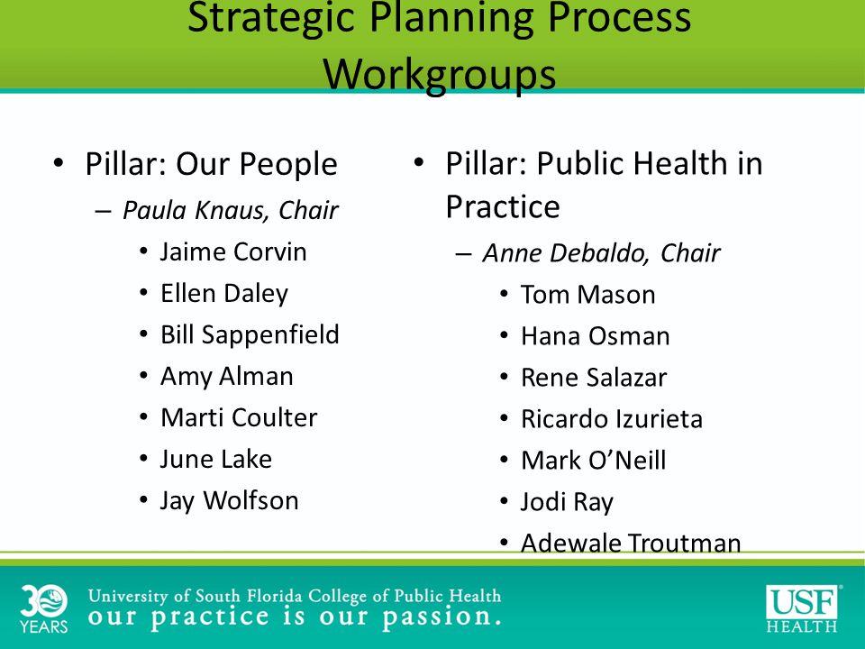Pillar: Our People – Paula Knaus, Chair Jaime Corvin Ellen Daley Bill Sappenfield Amy Alman Marti Coulter June Lake Jay Wolfson Pillar: Public Health